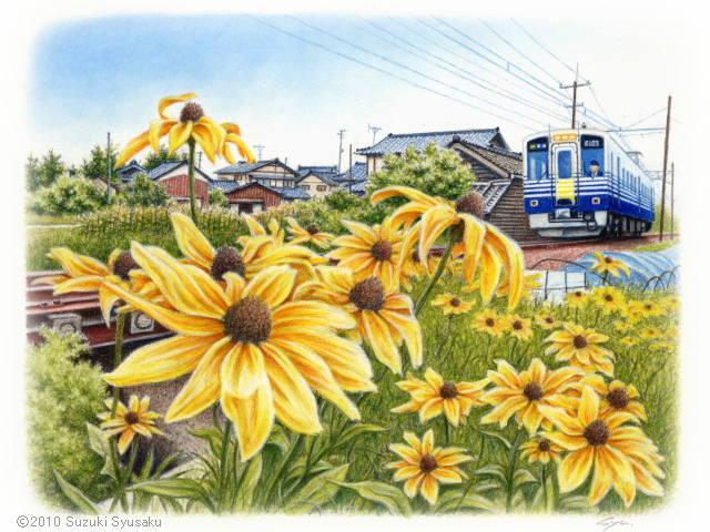 札幌の水彩色鉛筆画家 イラストレーター鈴木周作 水彩色鉛筆画の